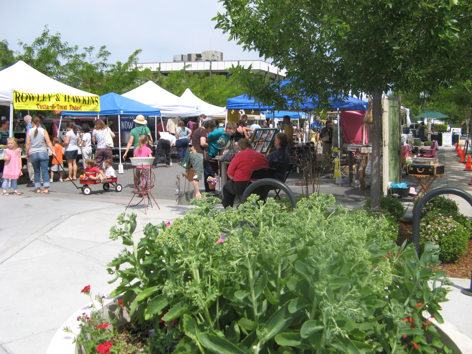 Market at the Parkway