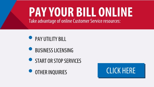 Take advantage of services to pay utility bill, sign up for business licensing or start/stop services