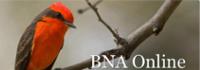 02_Birds_North_America_200px